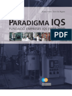 Paradigma IQS