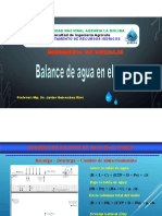 Balance zona radicular