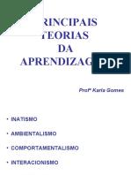 SLIDES PRINCIPAIS TEORIAS 2