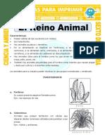 Ficha-El-Reino-Animal-para-Sexto-de-Primaria.doc