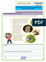 3° - MARTES - APRENDO EN CASA - SEMANA 23.pdf