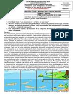 GUIAS SEPTIMO 2 PERIODO.docx