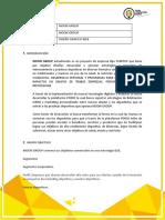 FORMATO DE BRIEF PROTECTO MOON GROUP V1.docx