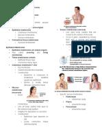 Skin and Body Membranes Rev