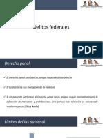 Delitos federales.pdf