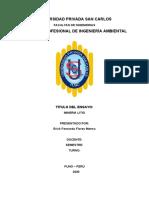 ensayo de mineria litio.docx