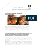 files_deforestacion_1566991482.pdf