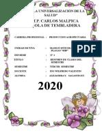 AÑO DE LA UNIVERSALIZACIÓN DE LA SALUD.docx