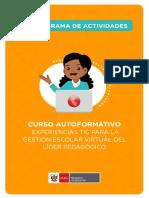 cronograma_experiencia_tic.pdf