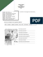 CBSE Class 7 German Worksheet (5)
