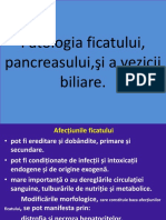 18_patologia__ficatului-16517