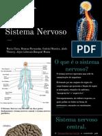 Sistema Nervoso.pptx