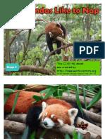 Red_Pandas_Like_to_Nap-Wordscientists-FKB.pdf