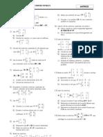 matrices 2 MCS