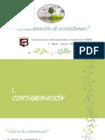 Actividad VI Contaminación de ecosistemas ().pdf