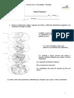 Ficha Formativa 1C-3.doc