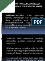agen sosialisasi