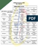 MALLA CURRICULAR_SeminarioBT.pdf