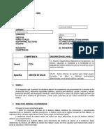 SÍLABO  c Auditoría médica 2020-2 (1)