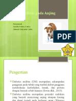 Diabetes Mellitus pada Anjing.pptx