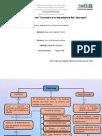 mapa conceptual del Concepto y la importancia del Liderazgo