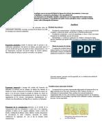 Ergonomia resumen.docx