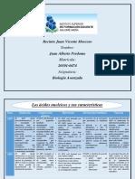 Cuadro comparativo de ADN y ARN.pdf