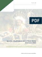 Flauta-nativa-americana-native-american-flute-Apostila