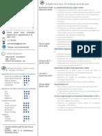 CV en français sans logos