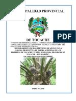 TDR - LIQUIDACION TECNICA FINANCIERA PROYECTO PALMA