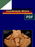 Aula Coordenação Motora.pdf