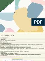 Anatomía Práctica .pdf
