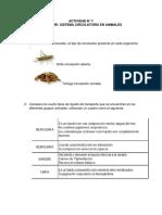 ACTIVIDAD 7.pdf