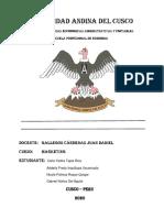 resumen ejecutivo-convertido (1)