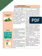 Cuadro Descriptivo Componentes y Factores de Mercado