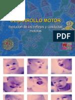 Desarrollo Reflejos, Conductas motoras y Destrezas motoras