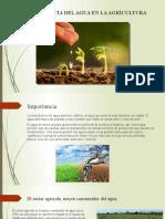 Importancia del agua en la agricultura