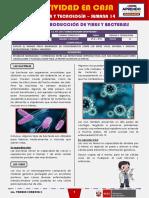 SEMANA 14 - FUNCIÓN REPRODUCCIÓN DE VIRUS Y BACTERIAS [2do CIENCIA Y TECNOLOGÍA]