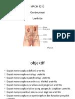 Presentation Urethritis