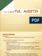 Ap. Auditiv