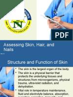 assessment hair skin nails