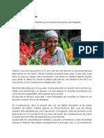 Français Sommatif Article