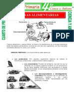 Cadena-Alimentaria-para-Cuarto-de-Primaria.doc