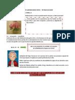 TALLER CAMINAR DESDE CRISTO TESTIGOS DE AMOR