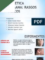 GENETICA HUMANA.pdf