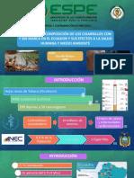 EXAMEN_DIAPOSITIVAS_NOROÑA_C.pdf