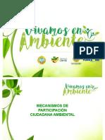 VIVAMOS EN AMBIENTE 2017 - copia (1)