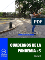 Cuadernos de la Pandemia 5.pdf