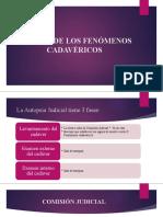 fenomenos cadavericos.pptx (2)