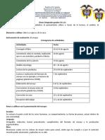 Áreas integradas grados 10 y 11 (1)